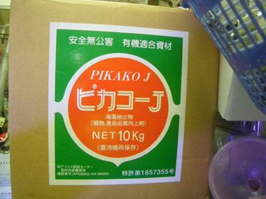 IMGP1006.jpg